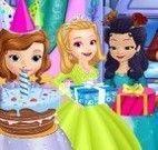 Princesa Sofia festa de aniversário