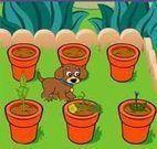 Jogos de Jardinagem
