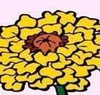 Pintar livro das flores