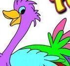 Colorir avestruz