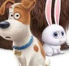 Filme Pets achar números