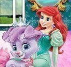 Cuidar do pet da Ariel
