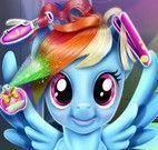 Rainbow cabeleireiro