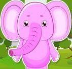 Banho do elefantinho