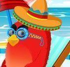 Angry Bird na praia