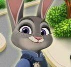 Banho da Judy