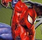 Homem Aranha lutar com inimigos