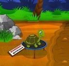 Ajudar a tartaruga a passear