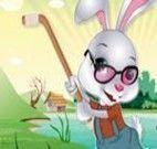 Vestir o coelho da Páscoa esportivo