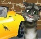 Tom lavar carro