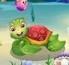 Cuidar da tartaruga