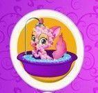 Esquilo no banho