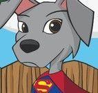Vestir cachorro Super Herói