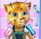 Banho do gatinho virtual