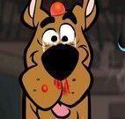 Scooby Doo no médico