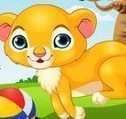 Leão no banho