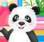 Cuidar do urso panda