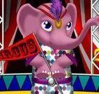 Vestir elefante do circo