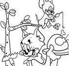 Colorir desenho Tom e Jerry