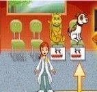 Administrar clínica veterinária
