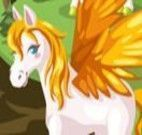 Cuidar do Pegasus