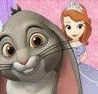 Cuidar do coelho da Sofia