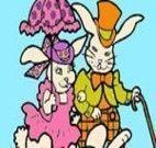Colorir casal de coelhos