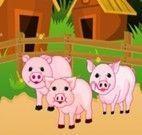 Cuidar de porcos
