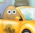 Pou limpar carro