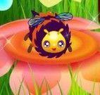 Cuidar das abelhas