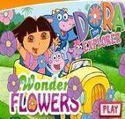 Flores da Dora