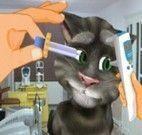 Gatinho virtual médico dos olhos