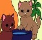 Pintar os gatinhos