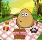 Piquenique do Pou