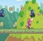 Windy a raposa cor-de-rosa